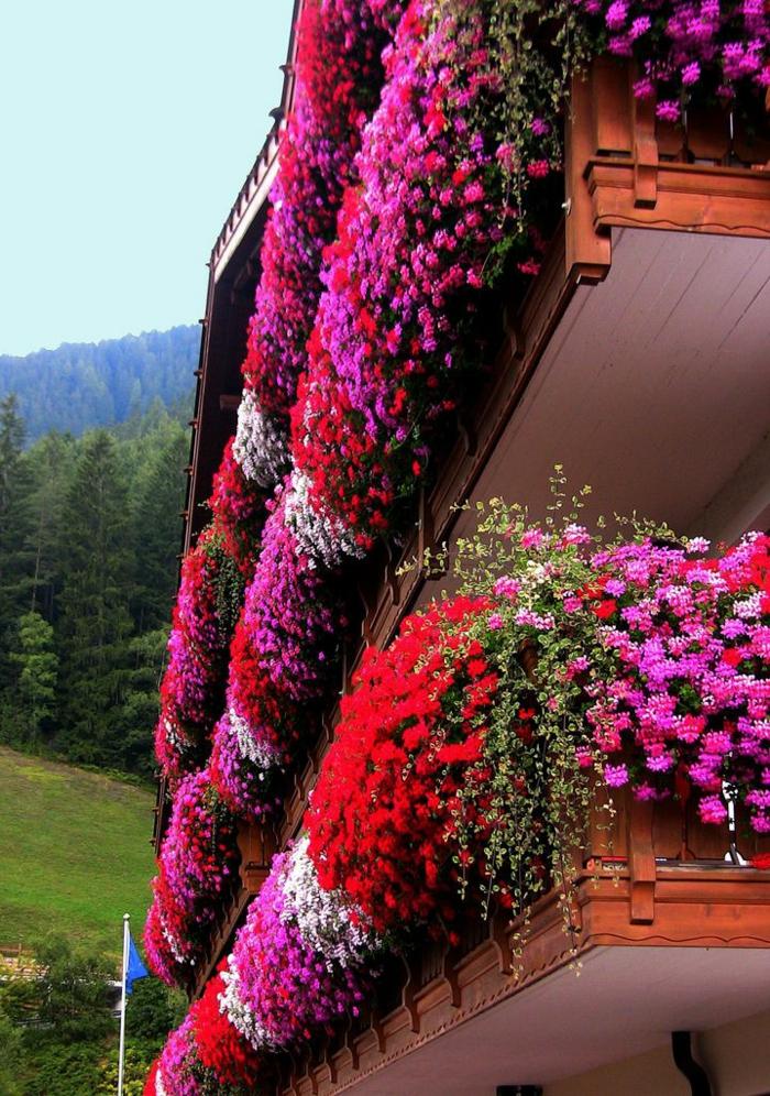 fleurir-son-balcon-avec-fleurs-d-exterieur-modernes-joli-exterieur-moderne-avec-fleurs-rouges