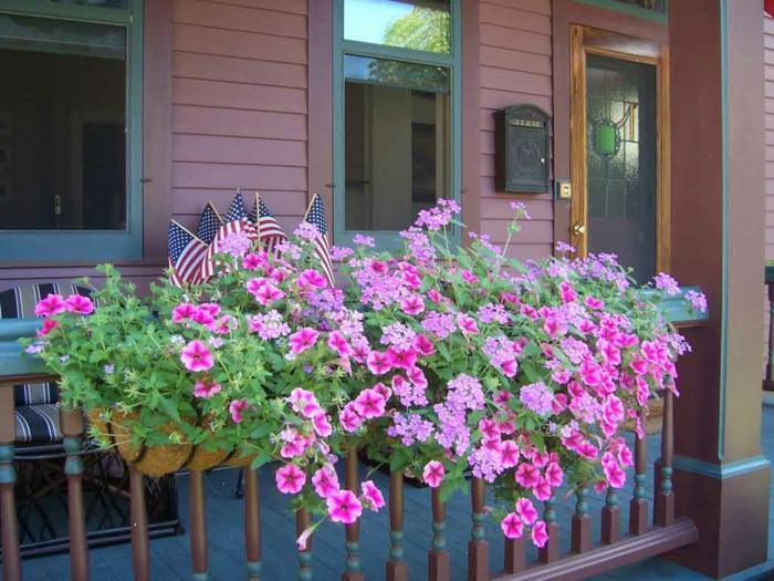 fleurs-de-balcon-pour-bien-aménager-une-jolie-terrasse-devant-la-maison-fleurs-violets