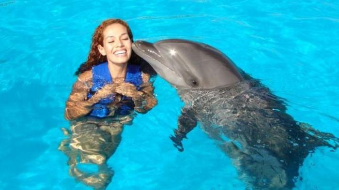 idée-cadeau-coupon-nager-avec-les-dauphins-france-belle-sourire