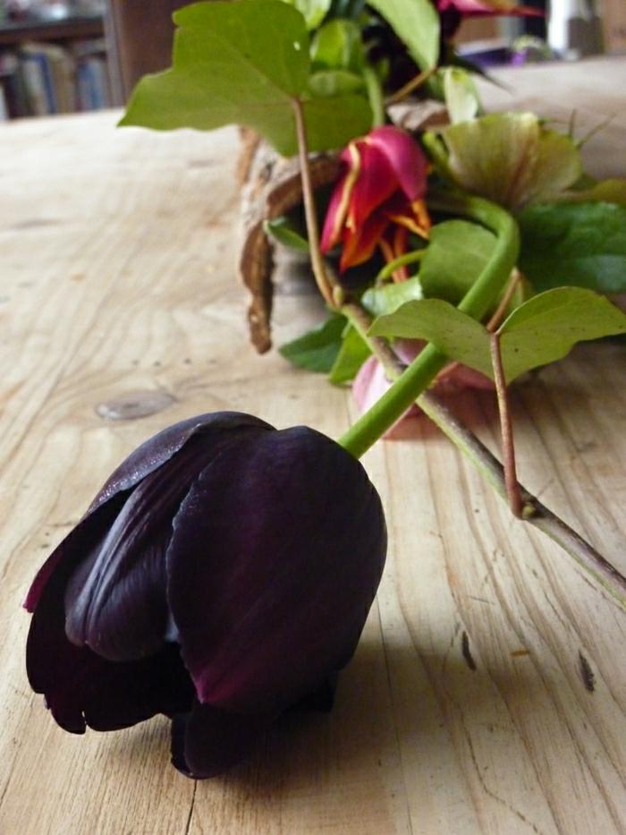 idées-bouquet-tulipe-noire-fleur-de-beauté-réel-table-bois