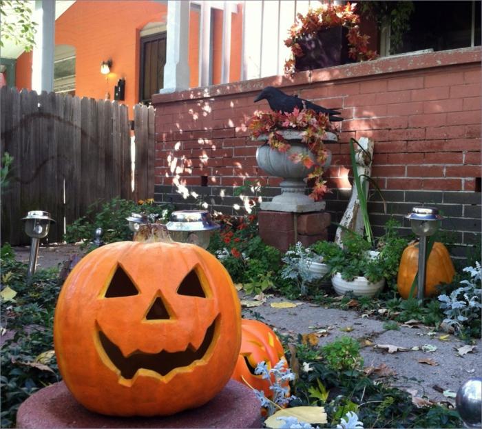 image-citrouille-Halloween-déco-maison-Toussaint-jardin-horreur