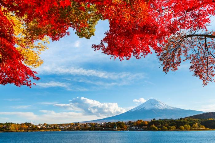 image-d-automne-paysage-landscape-tableau-la-beauté-de-la-montagne