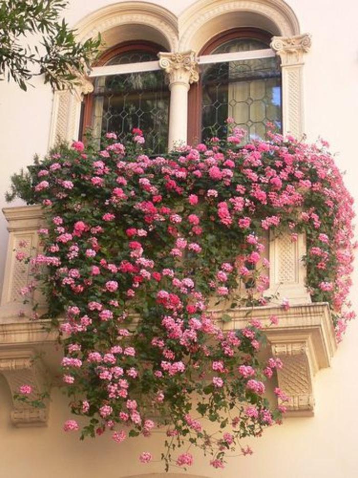 les plus beaux fleurs de balcon en 47 images. Black Bedroom Furniture Sets. Home Design Ideas