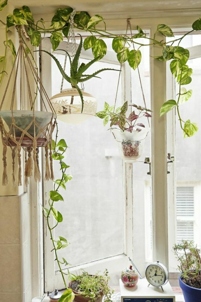 jolie-decoration-avec-plante-verte-d-intérieur-comment-bien-decorer-l-interieur