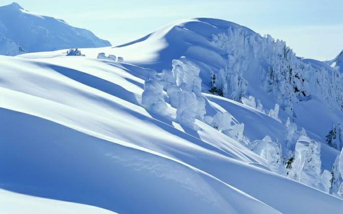 l-enneigement-alpes-enneigement-les-2-alpes-chouette-photo-blancheur