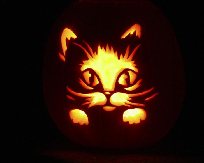 la-decoration-dessin-citrouille-halloween-citrouille-chat-éclairage-deco-halloween