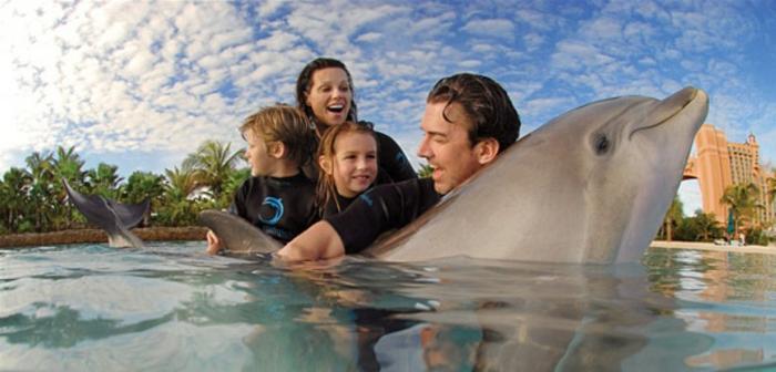la-réalisation-d-une-reve-nager-avec-les-dauphins-marineland-famille-heureuse