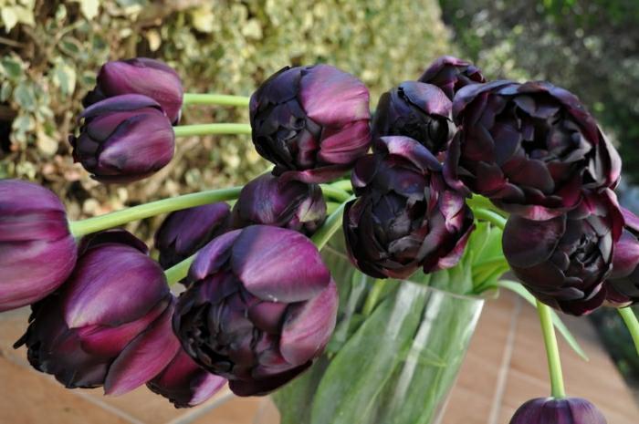 la-tulipe-noire-photographe-publicitaire-idée-à-faire-bouquet