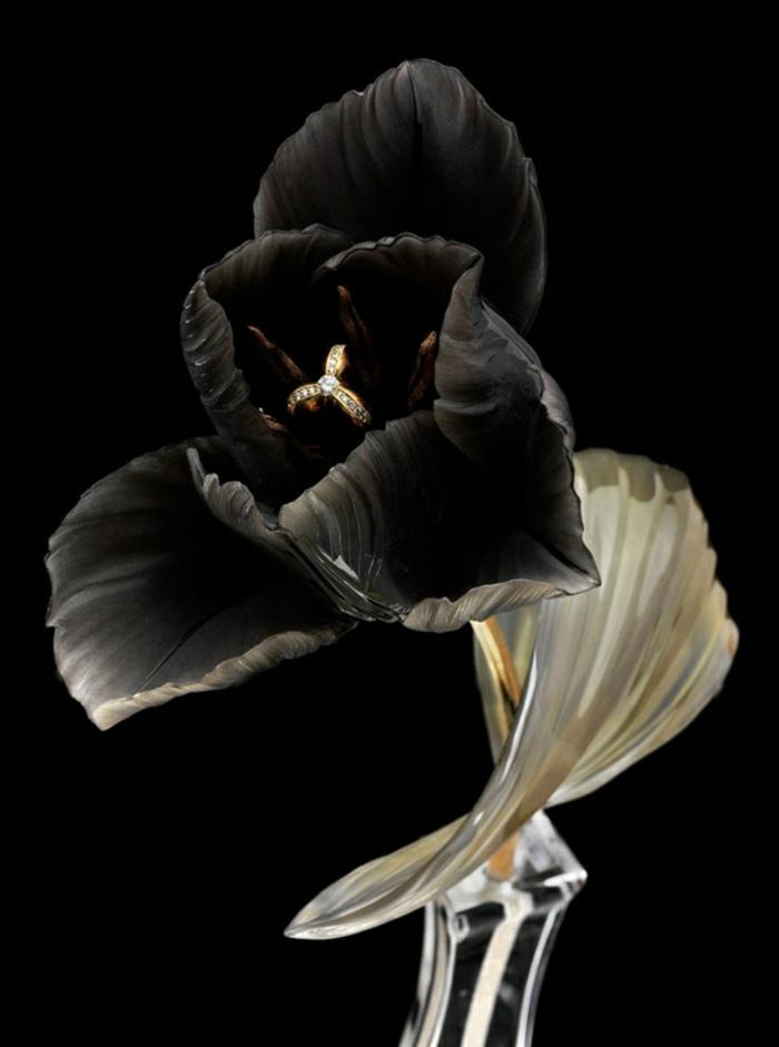 magnolia-tulipe-noire-nature-peleuse-image-de-tulipe-noir-et-blanc-bague-dans-fleur