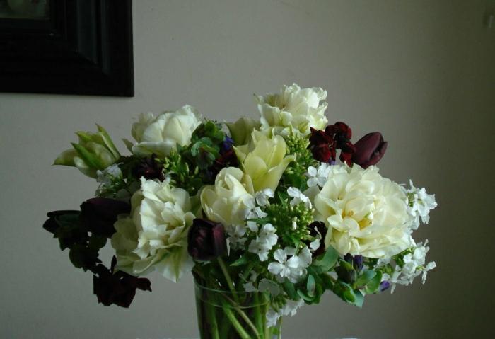 magnolia-tulipe-noire-nature-peleuse-image-de-tulipe-vase