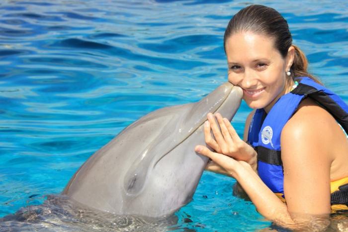 nage-dauphins-dans-la-mer-ou-piscine-dauphine-jolie-bisou