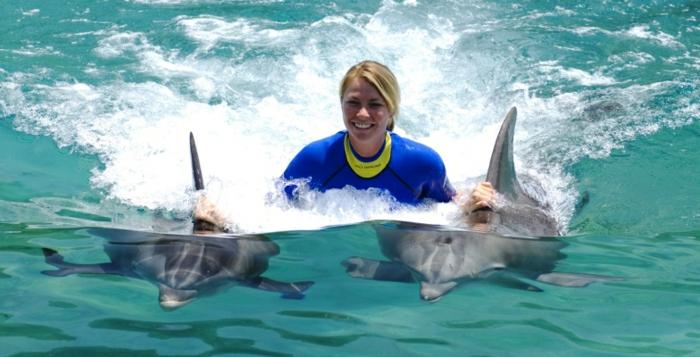 nage-dauphins-dans-la-mer-ou-piscine-dauphine-jolie-photo-professionnel