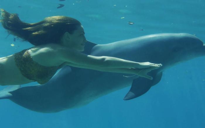 nager-avec-les-dauphins-en-france-europe-cadeau-original-à-la-mer-plonger