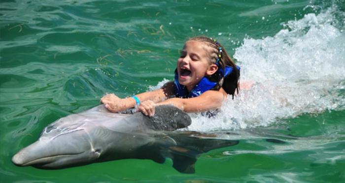 nager-avec-les-dauphins-en-france-europe-cadeau-original-cool