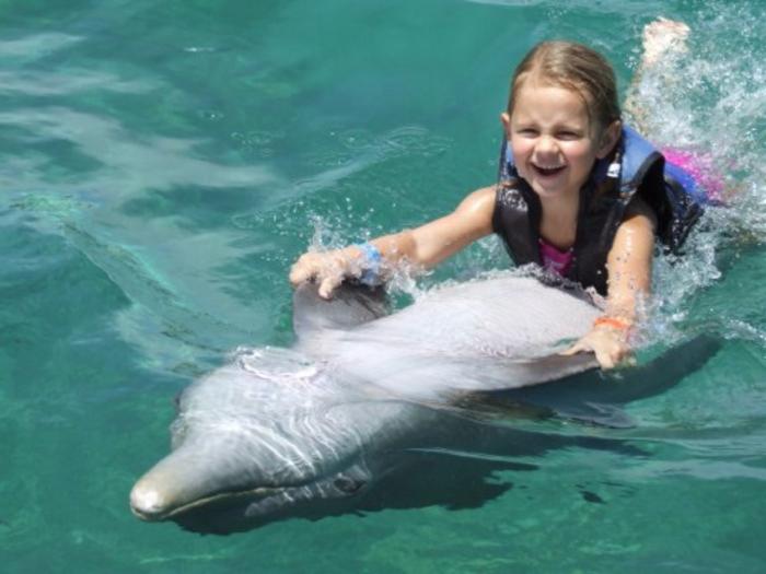 nager-avec-les-dauphins-en-france-europe-cadeau-original-enfant