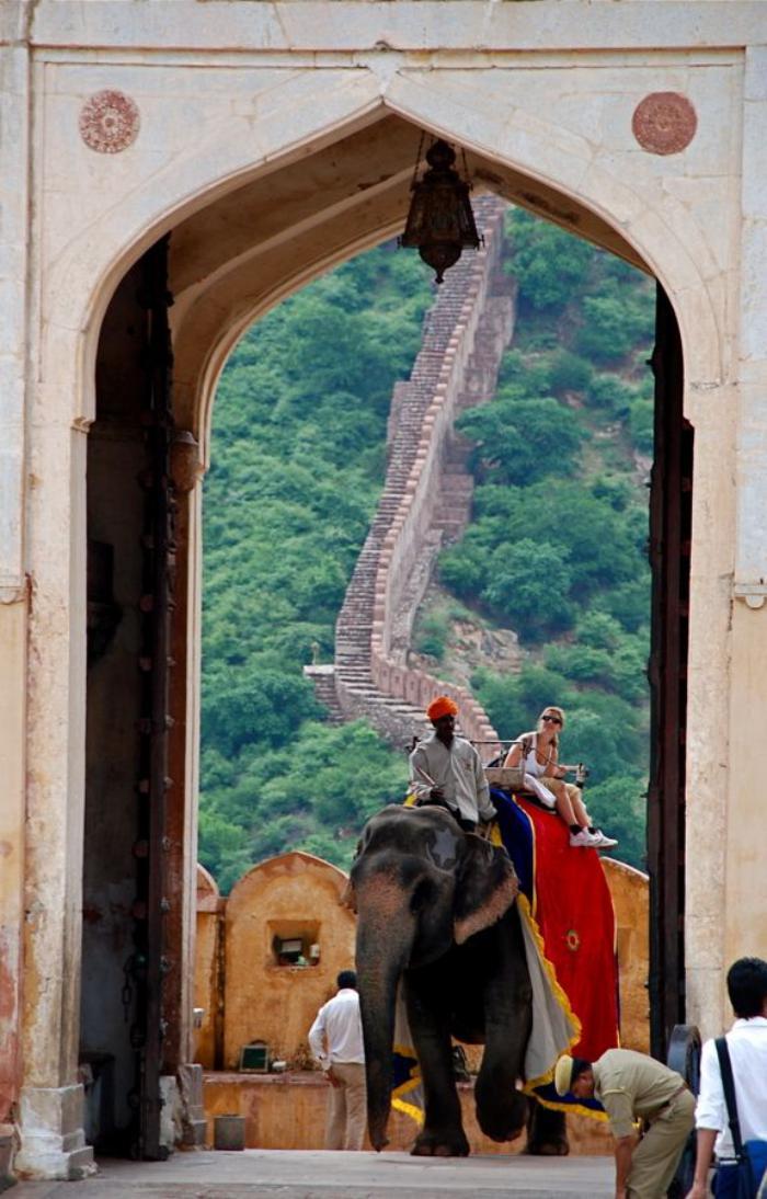 palais-indien-entrer-dans-un-palais-sur-le-dos-d'un-éléphant