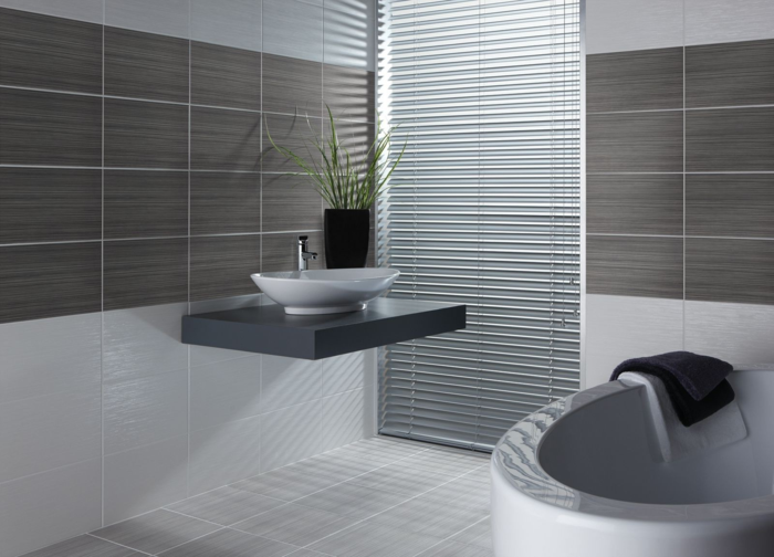 Le carrelage salle de bain quelles sont les meilleures - Plante pour salle de bain sombre ...