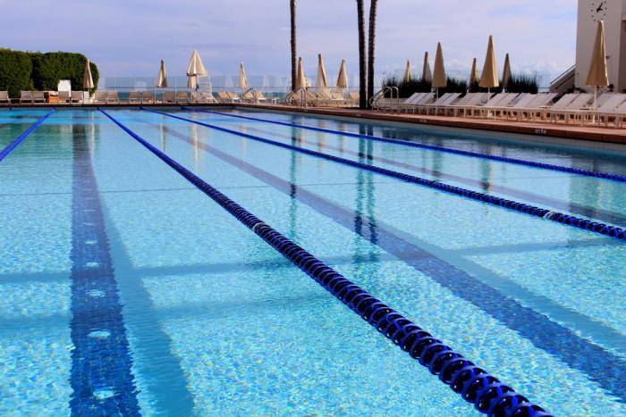 En recherche du meilleur bassin du type piscine olympique - Dimension d une piscine olympique ...