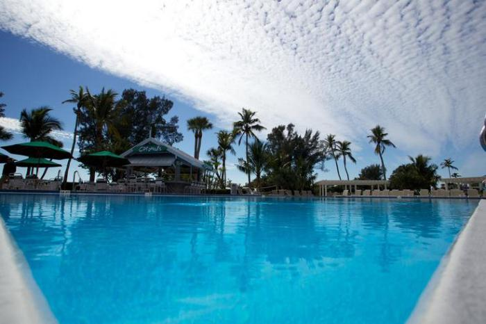 piscine-olympique-piscine-extérieure-de-taille-olympique-destination-exotique