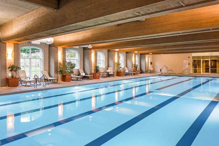 piscine-olympique-une-belle-piscine-spa-à-taille-olympique