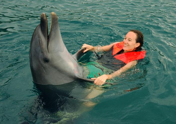 réaliser-son-rêve-nager-avec-les-dauphins-marineland-cool-photo