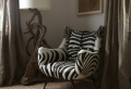 Beaucoup de variantes pour choisir votre fauteuil zèbre en 40 photos!