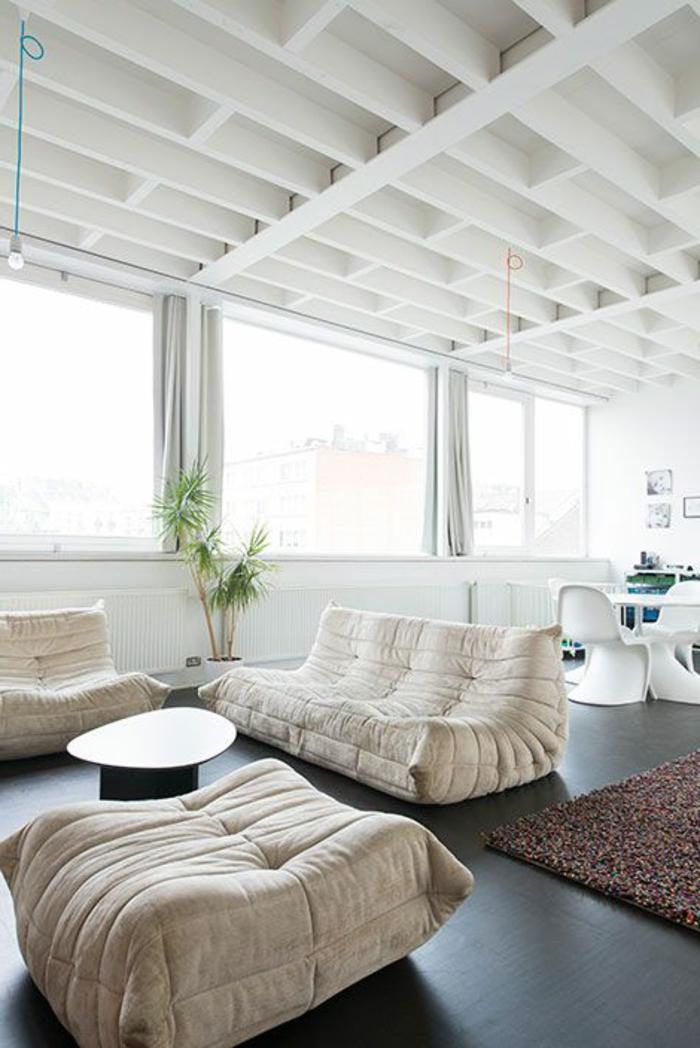 1-joli-salon-d-esprit-elegant-chauffeuses-bultex-gris-clairs-et-tapis-marron-plante-verte-d-interieur-grandes-fenetres
