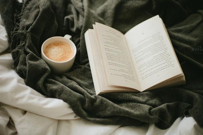 Idée-pour-la-déco-cozy-de-votre-maison-ambiance-café-et-livre-lit