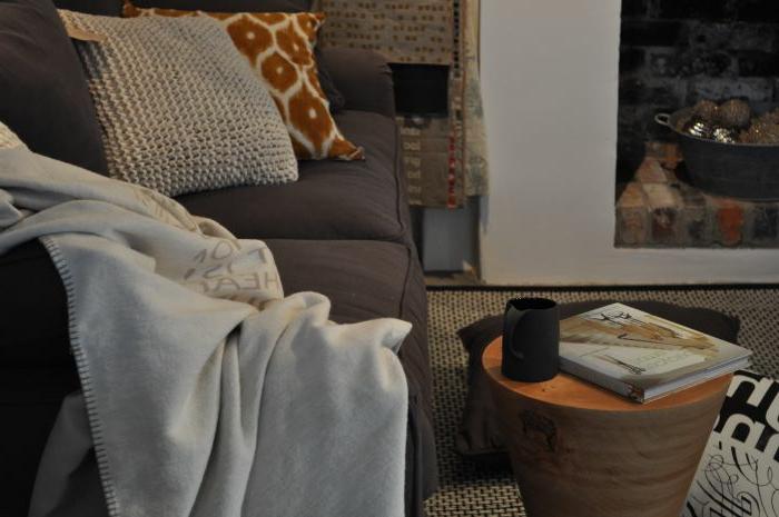 beau-salon-idée-pour-la-déco-cozy-de-votre-maison-ambiance