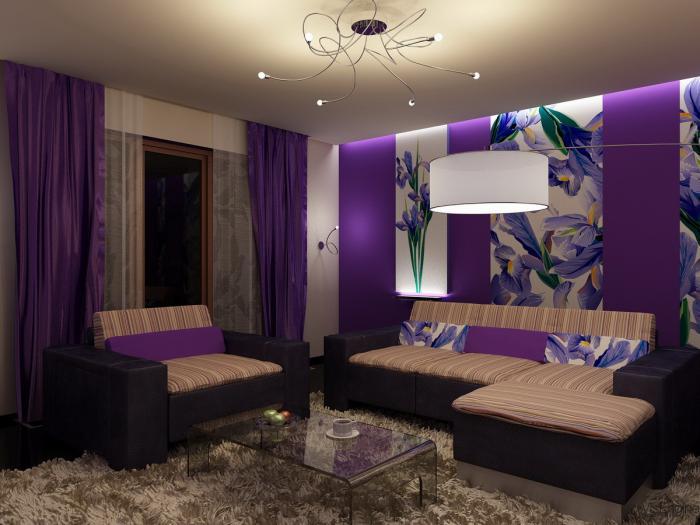 chambre-violette-salle-de-séjour-violette