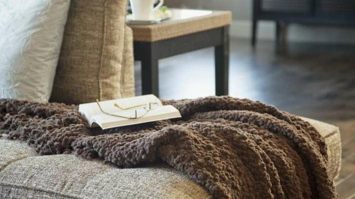 cosy-salle-de-séjour-canapé-convertible-confortable-belle-photo