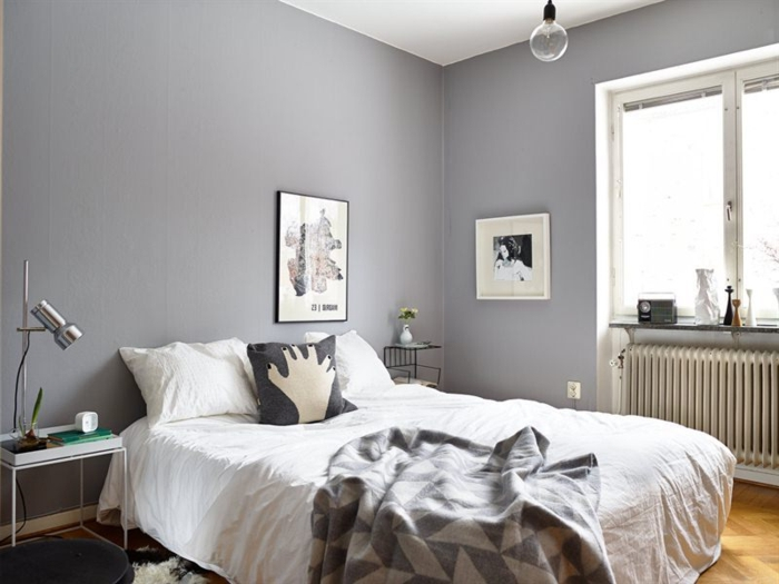 couleur-chambre-adulte-en-gris-design-gris-cool