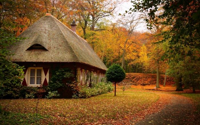 déco-maison-cool-extérieur-rustique-automne-une-chambre-belle-et-cozy-avec-décoration-maison-rustique