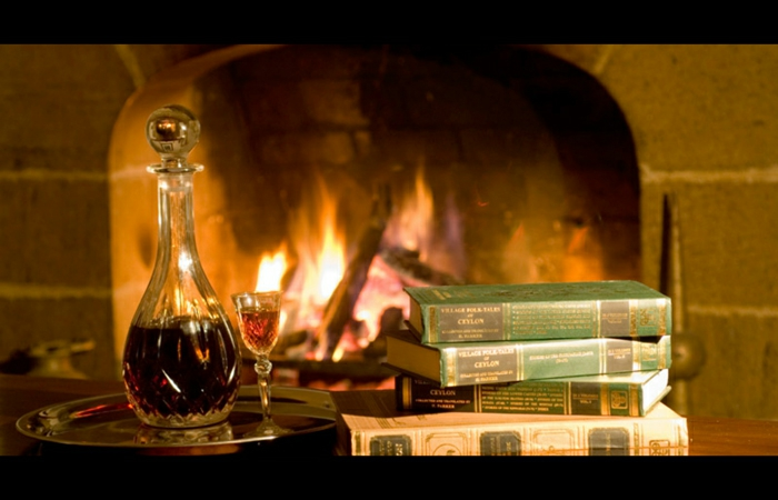 la-deco-cosy-déco-salon-cosy-design-intérieur-cheminée-livres