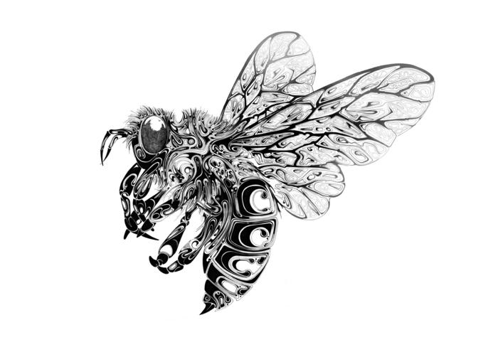 les-arts-graphiques-art-graphique-dessin-bee-idée