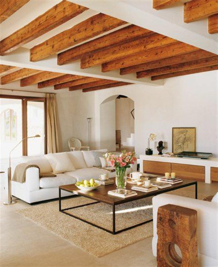 maison-familiale-et-rurale-constructeur-maison-familiale-avec-tapis-beige-et-table-basse-de-salon