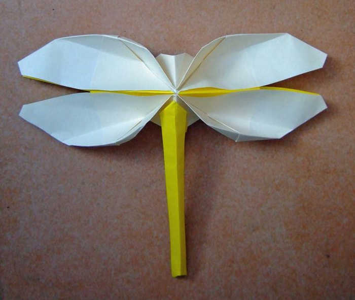 origami-facile-a-faire-en-papier-colore-insect-origami-comment-creer-origami-facilement