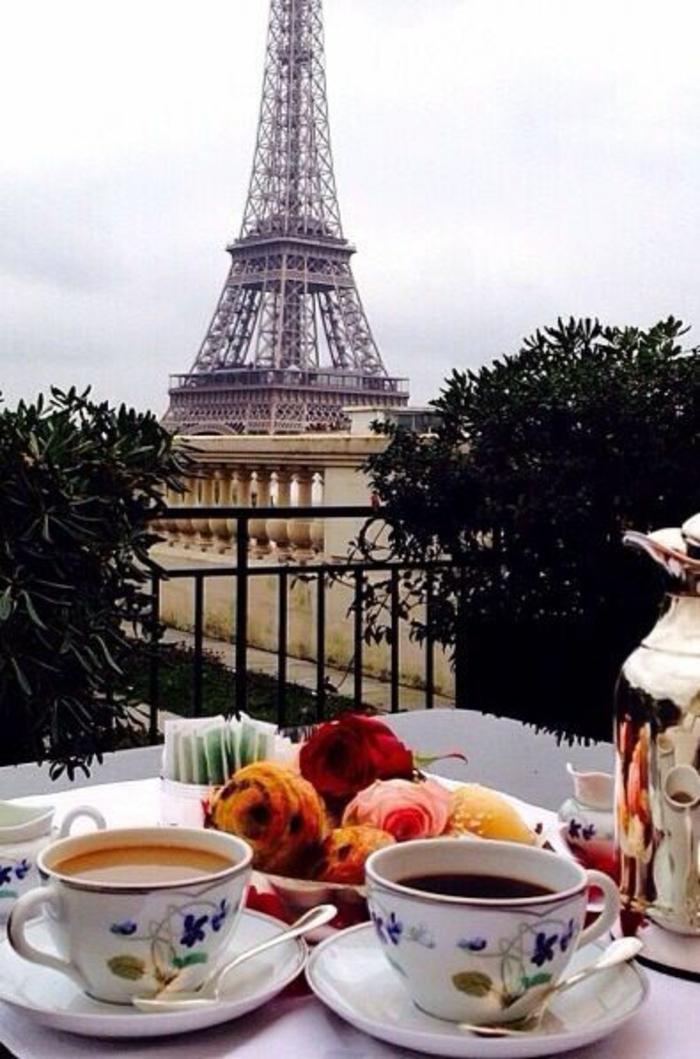 promenades-à-paris-se-balader-capitale-de-france-déjeuner-la-tour-effel-d