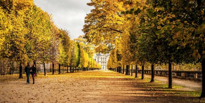 promenades-à-paris-se-balader-capitale-de-france-promenade-automne
