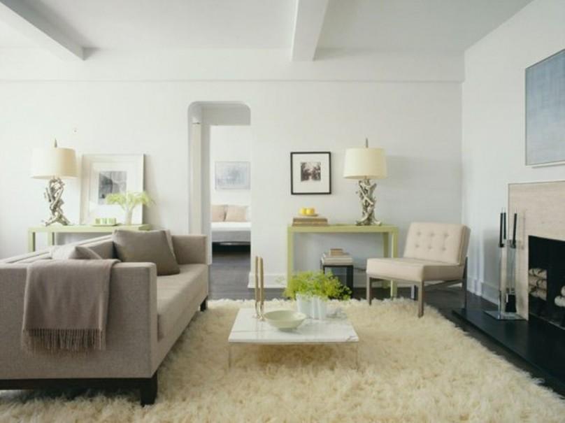 Belle d coration la maison avec le tapis shaggy blanc - Idee amenagement sejour ...