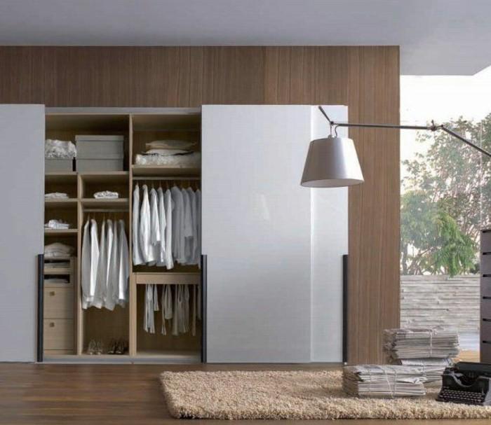 1-amenagement-de-placard-tapis-beige-portes-de-placard-coulissantes-sol-en-parquet-foncé-tapis-beige
