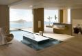 Belles idées avec la baignoire design!