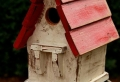 Designs créatifs de cabane à oiseaux