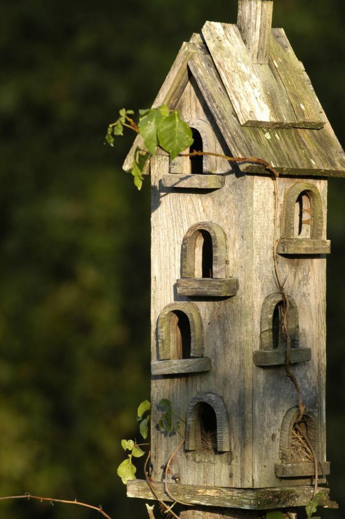cabane-à-oiseaux-maison-oiseau-antique