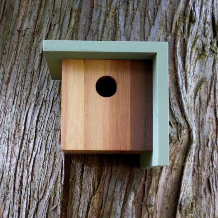 cabane-à-oiseaux-nichoir-moderne-rectangulaire