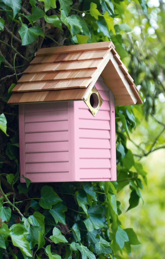 cabane-à-oiseaux-rose-mise-sur-un-arbre
