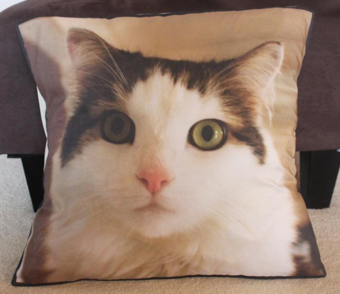 coussin-personnalisé-photo-chat-domestique