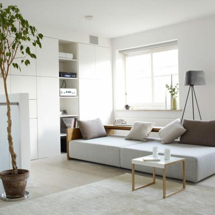 joli-salon-de-couleur-taupe-et-tapis-gris-portes-de-placard-en-bois-de-couleur-blanche-plante-verte