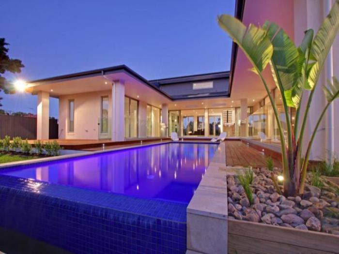 piscine-à-débordement-grande-plante-verte
