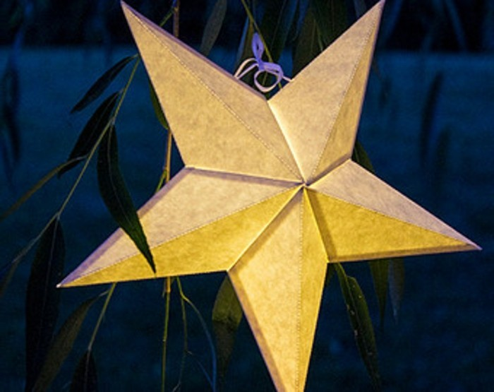 plante-etoile-de-noel-origami-etoile-de-noel-jaune